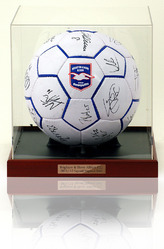 BRIGHTON & HOVE ALBION Hand Signed Football
