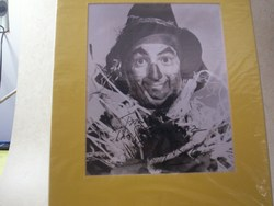 Ray Bolger as The Scarecrow of OZ b