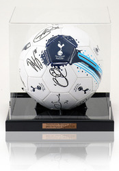 Tottenham Hotspur 2013/14 Squad Signed Football