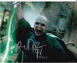 Ralph Fiennes Autograph HARRY POTTER signed in person 10 x 8 photo