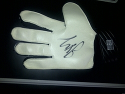 Joe Hart Glove