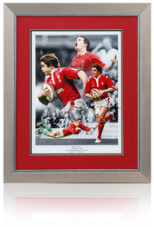 Shane Williams WALES Rugby WRU Hand Signed Montage